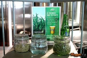 Barley, Spring Water, Hops